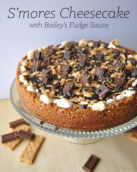 S'Mores Cheesecake with Bailey's Irish Cream Hot Fudge