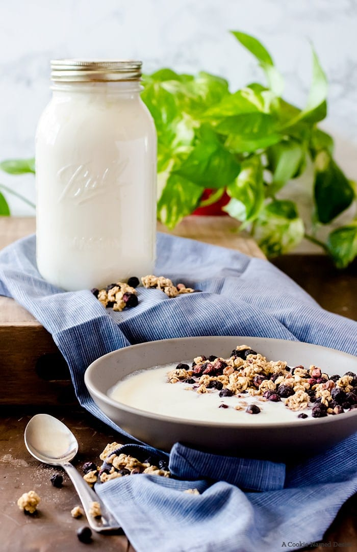 Learn how to make homemade yogurt without any fancy equipment. Get tips and tricks for success and how to tailor the yogurt to your tastes. This is a wonderfully easy healthy recipe you will use regularly!