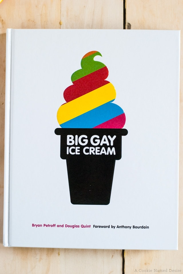Big Gay Ice Cream Book Review