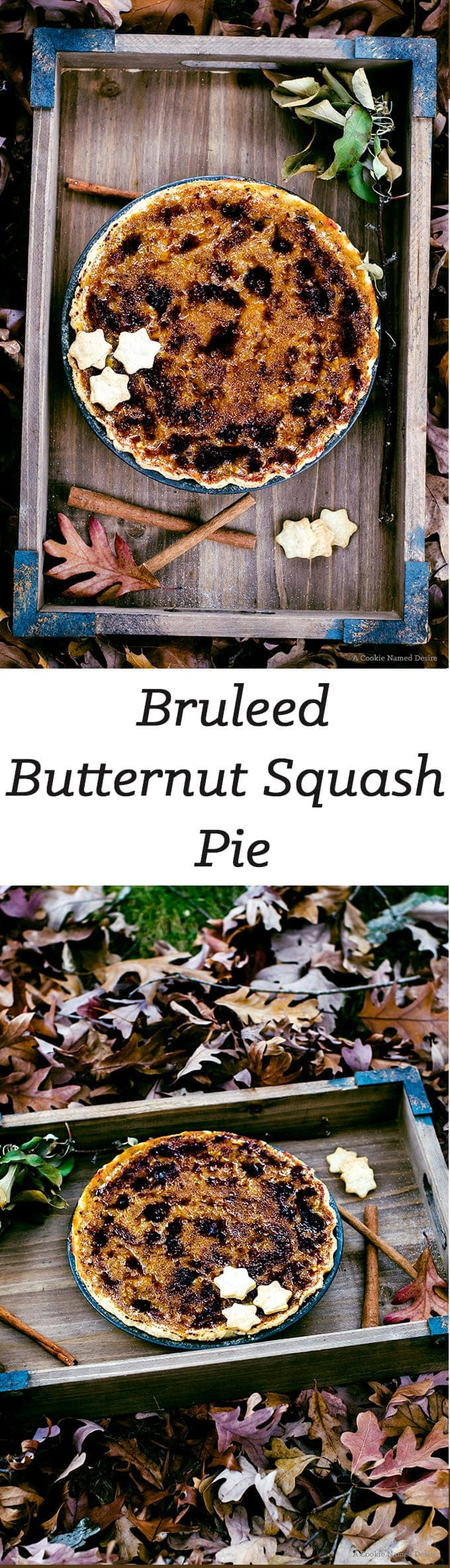 You are going to fall in love with this bruleed buternut squash pie with brown butter bourbon pie crust.