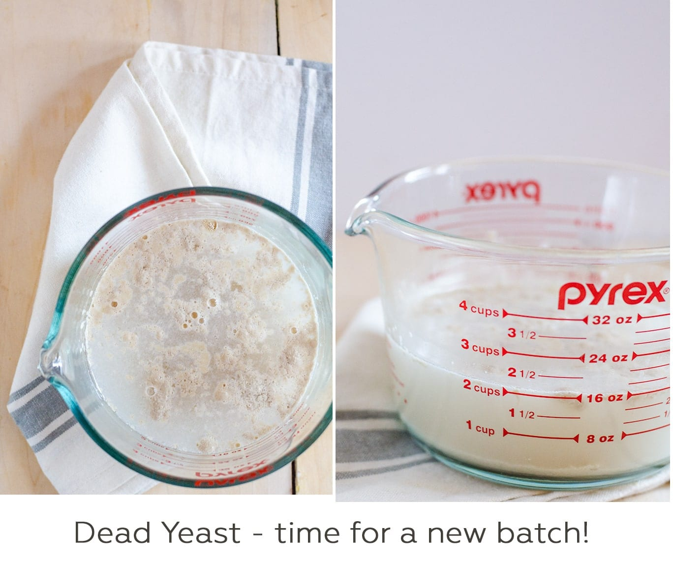 If after 10 minutes your yeast still looks like this, then your yeast is dead and you need a fresh batch