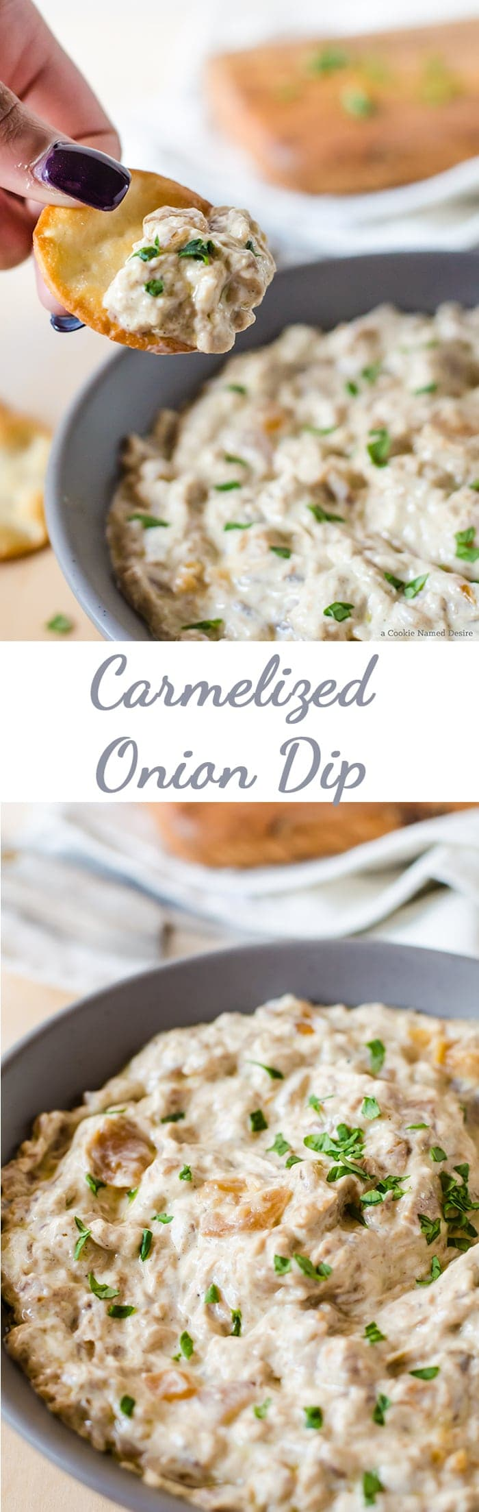 An easy caramelized onion dip recipe - perfect for snacking on at your next party!