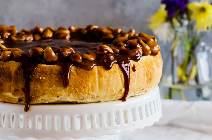 This salted caramel cashew cheesecake is the epitome of salty sweet indulgence. You will fall in love with this easy dessert recipe.
