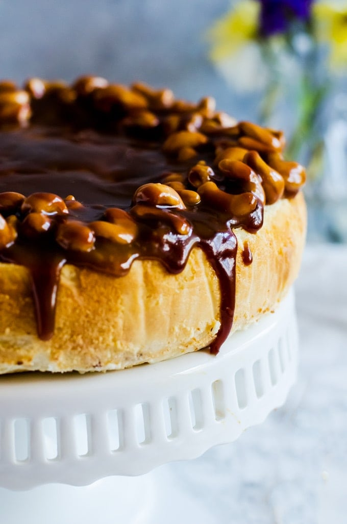 This salted caramel cashew cheesecake is a deliciously decadent salty sweet dessert. Your going to love this simple dessert recipe